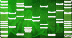 ETC synthetic biology image